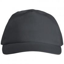 Basic 5 paneels katoenen cap