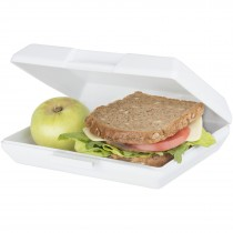 Oblong lunchtrommel